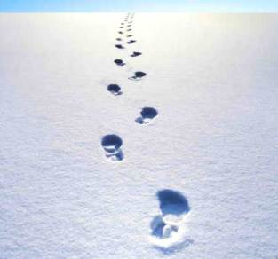footprints-in-snow11